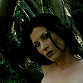 Wood nymph beauty Ariel X naked in the woods